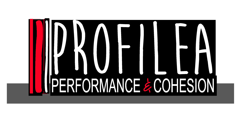 Profilea-Coaching
